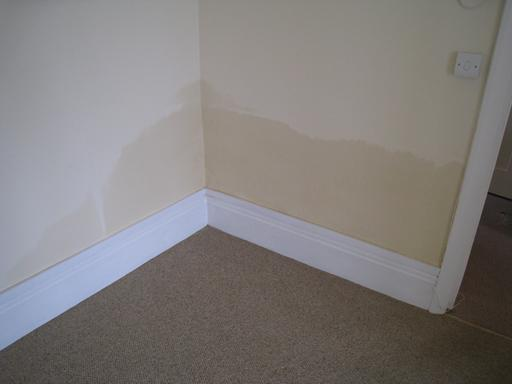 Rising dampness shown affecting plaster in the corner of a room