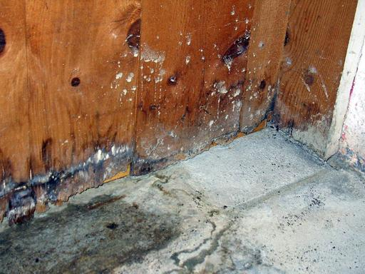Wet rot or mould in the corner of a room